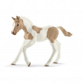 Schleich 13886 Paint Horse Fohlen