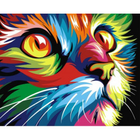 Regenboog Kat - Schilderen op nummer - 40 x 50 cm
