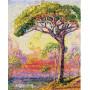 Pine Henri Edmond Cross - Schilderen op nummer - 50 x 40 cm