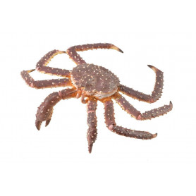 Collecta 88851 King Crab