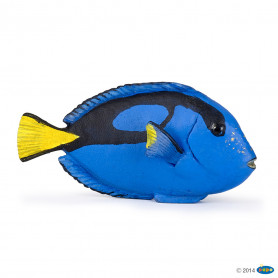 Papo 56024 Surgeonfish