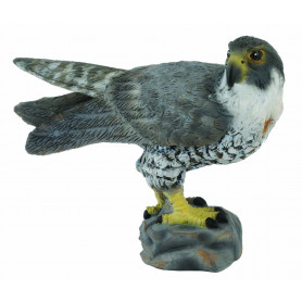 Collecta 88399 Peregrine Falcon