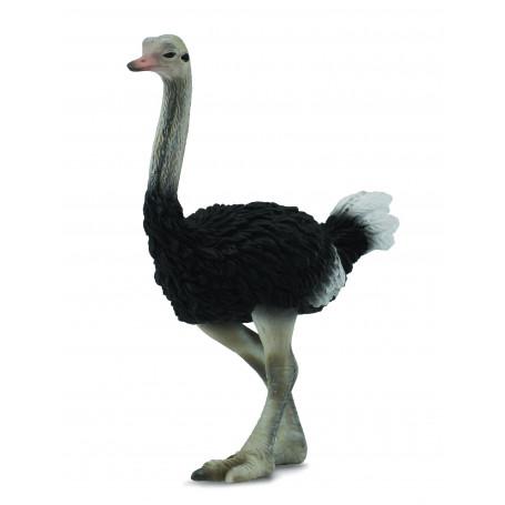 Collecta 88459 Struisvogel