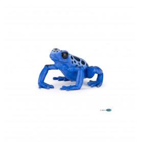 Equatorial blue frog