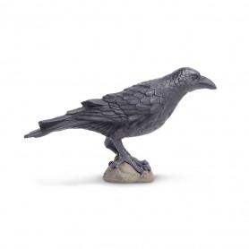 Safari 150829 Raven