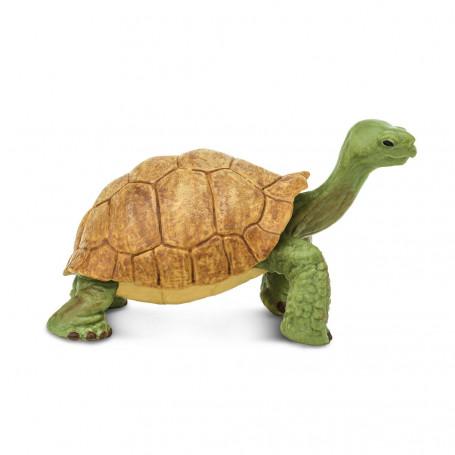 Safari 272529 Reuzenschildpad