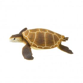Safari 202329 Groene Zeeschildpad