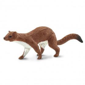 Safari 100412 Weasel