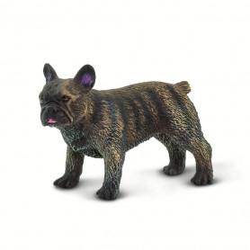 Safari 100304 French Bulldog