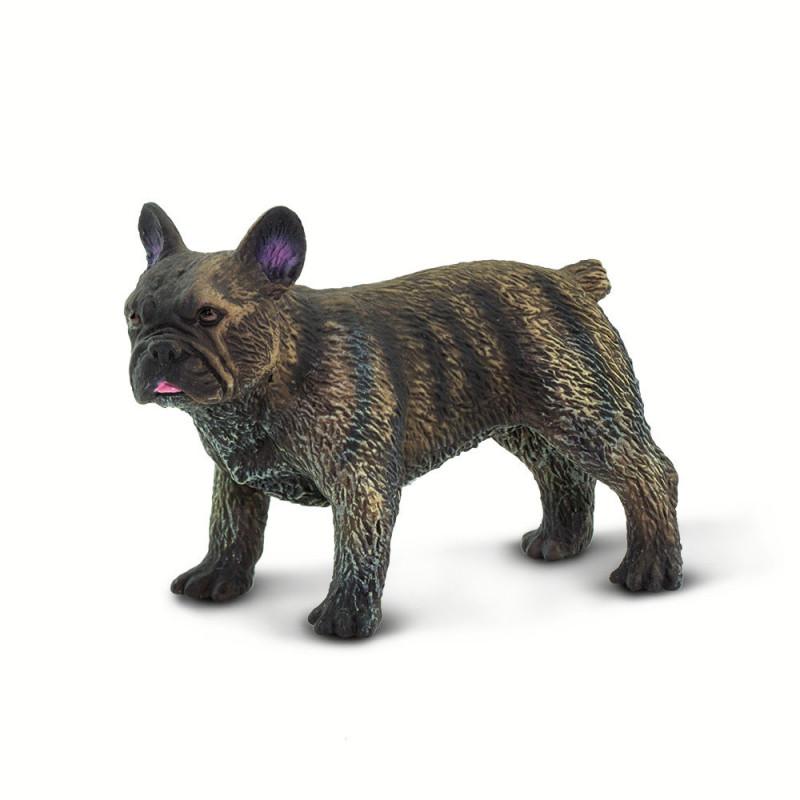 Safari 100304 Franse Bulldog