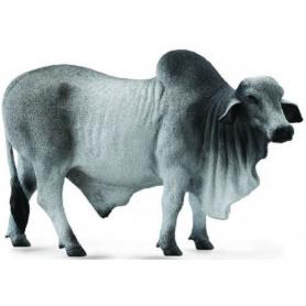 Collecta 88579 Brahman Bull