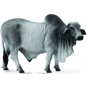 Collecta 88579 Brahman stier