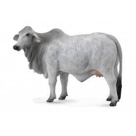 Collecta 88580 Brahman Koe