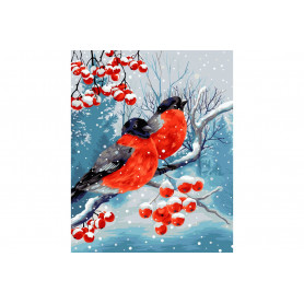 Bullfinches Painting by numbers