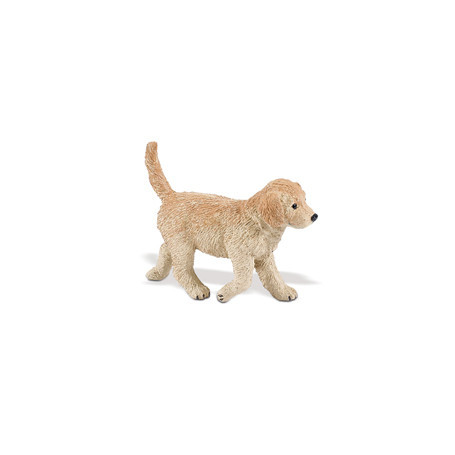Safari 253229 Golden Retriever Pup