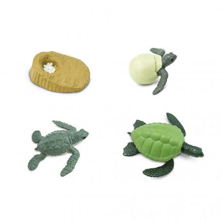 Safari 662316 Levenscyclus van de zeeschildpad