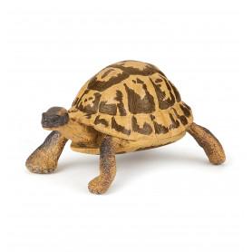 Papo 50264 Hermann's tortoise