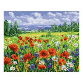 Wildflower meadow