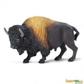 Safari 290829 Bizon