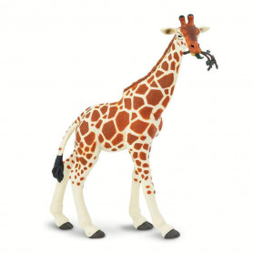 Safari 268429 Giraf etend