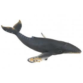 Collecta 88347 Baleine A Bosse