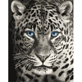 Blue Eyed Leopard - Schilderen op nummer - 40 x 50 cm