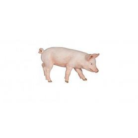Papo 51137 Bébé Cochon Male