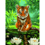 Tiger and Water Lilies - malen nach zahlen - 40 x 50 cm