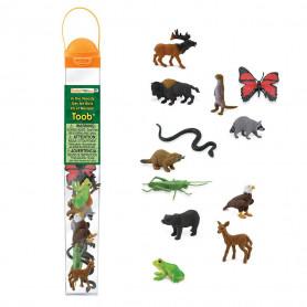 Safari 685504 Mini Bos dieren Set (12 stuks)