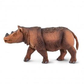 Safari 100103 Sumatran Rhino