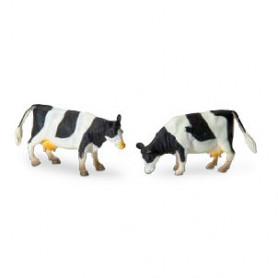 Zwartbonte koe staand