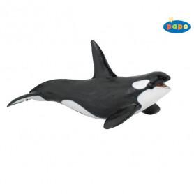 Papo 56000 Killer whale