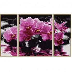 Orchideeën - Schipper Drieluik 50 x 80 cm