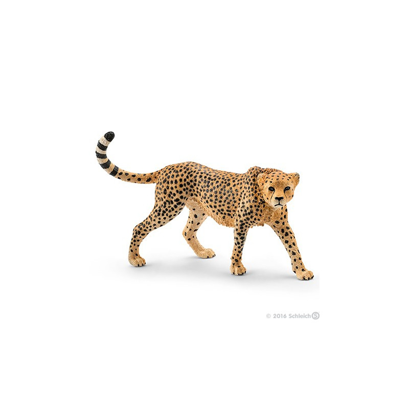 Schleich 14746 Cheetah vrouwelijk