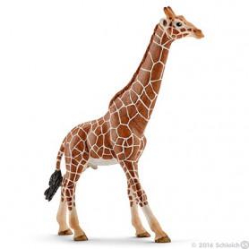Schleich 14749 Giraffen Mannelijk