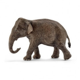 Schleich 14753 Elephant D'asie, Femelle