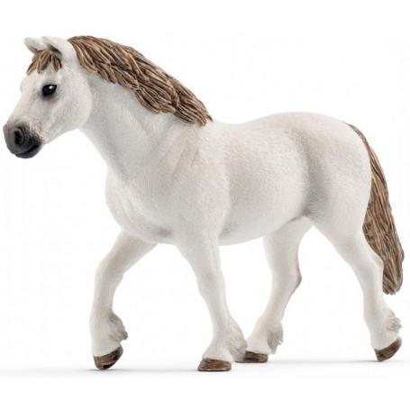 Schleich 13872 Welsh Pony Merrie