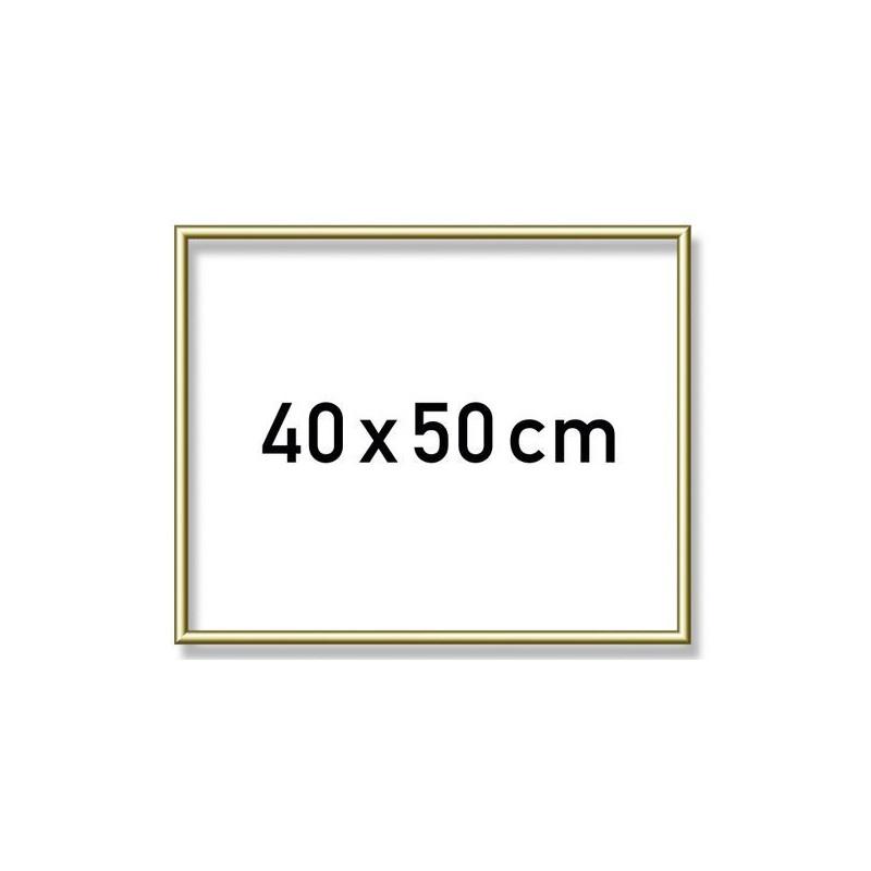 Goudkl. aluminium lijst 40x50 cm