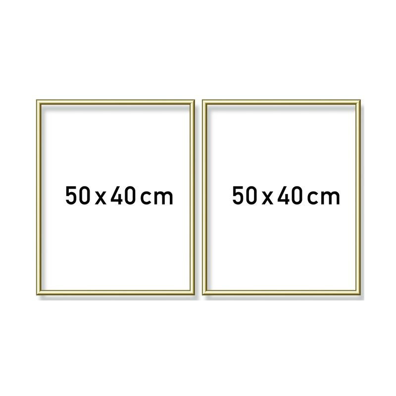 Goudkl. aluminium lijst tweeluik 50x80cm (2x 40x50)