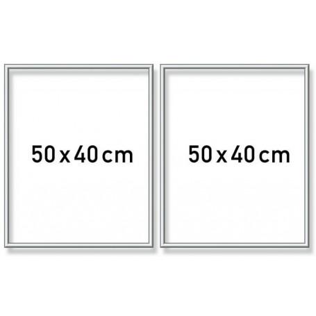 Zilverkl. aluminium lijst tweeluik 50x80 cm (2x 40x50)