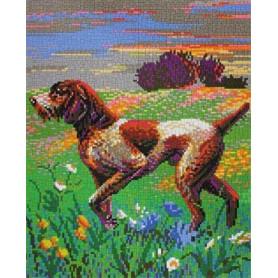 Stickit  41200 Jachthond